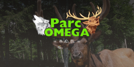 Facebook_ParcOmega